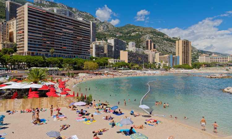 Monaco Real Estate - Larvotto Market